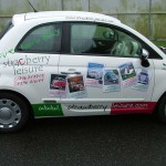 Strawberry Leisure Fiat 500 :: Vehicle Graphics by St Ives Signs